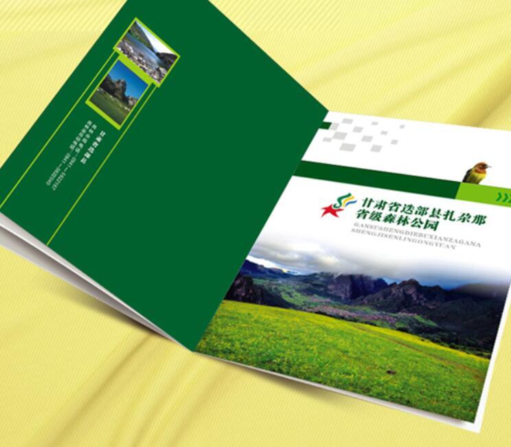 甘肃省迭部县扎尕那省级森林公园的企业画册设计
