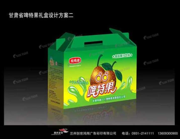 甘肃省啤特果礼盒设计方案