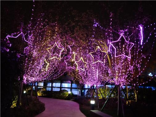 成都新年公园景点led光彩亮化工程2