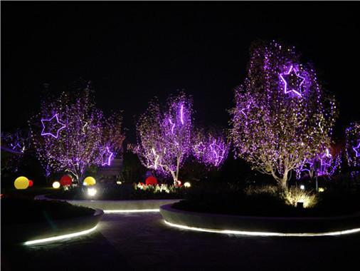 名创广告为您提供新年公园led光彩亮化成功案例