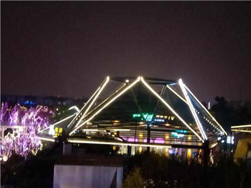 成都新年公園景點led光彩亮化工程5
