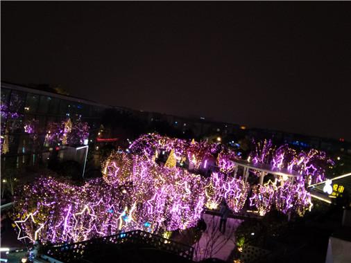 成都新年公園景點led光彩亮化工程4