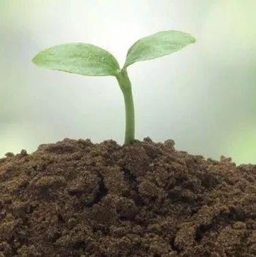 现如今土壤检测的主要方法都在如何进行着变化