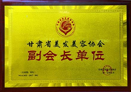 甘肃省美发美容协会副会长单位