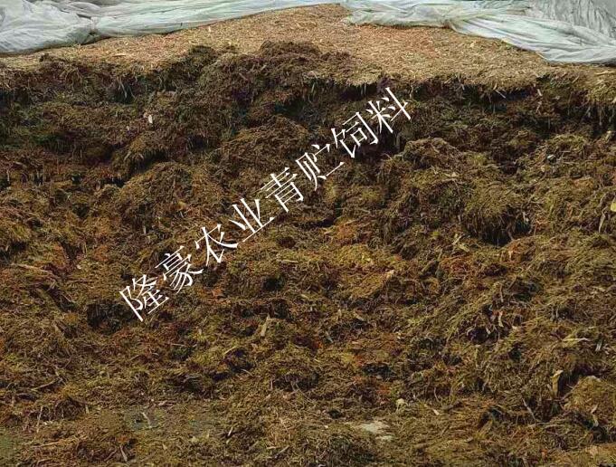 四川秸稈飼料銷售