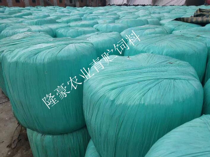 绵阳玉米秸秆饲料批发