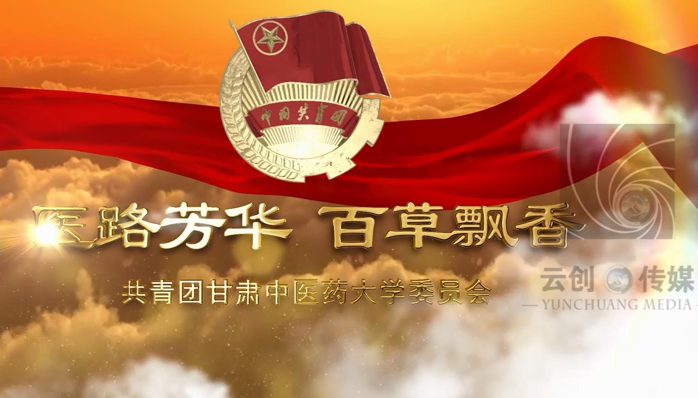 中医药大学共青团委员会