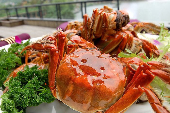 怎样可以挑到充满活力的新疆五两红大闸蟹?