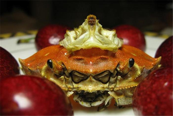 蟹和尚的传说!