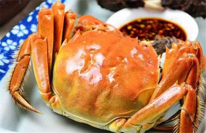 孕妇能不能吃阳澄湖大闸蟹呢?新疆大闸蟹养殖厂家告诉你