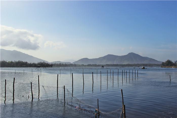 大闸蟹养殖场景图