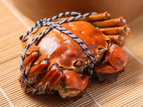 新疆五两红大闸蟹