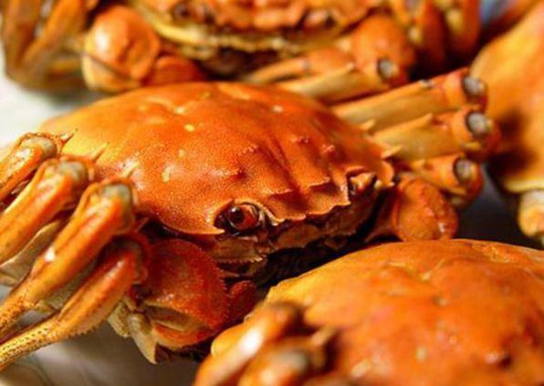 想要实现大闸蟹养殖高产高效,那一定要这样做!