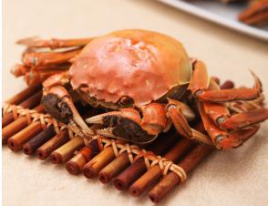 孕妇能不能吃大闸蟹?