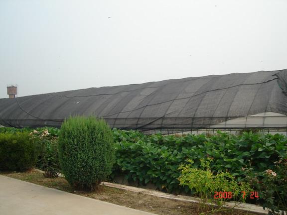 在农业和林果业防虫网是如何发挥作用的?