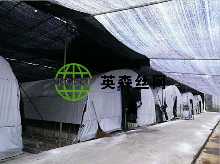 四川某用户使用我公司的遮阳网