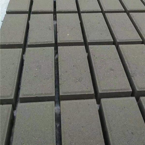 不清楚透水磚都有哪些種類?本文告訴你答案
