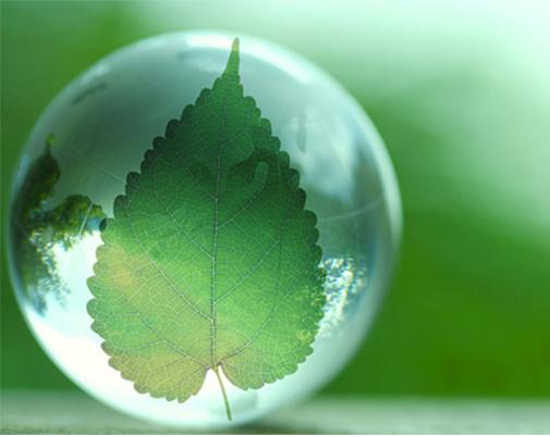 """""""绿色奇迹""""为世界贡献中国智慧"""
