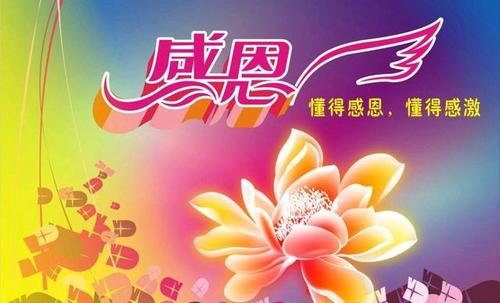 鑫太砂光风磨机