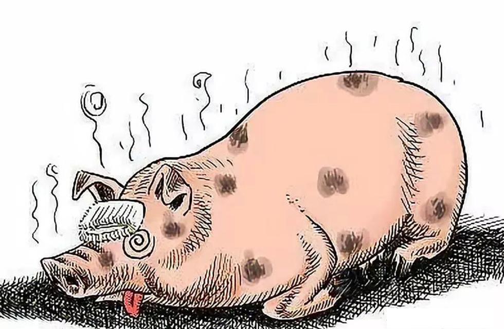 雅诗吉二氧化氯制品用于非洲猪瘟的防控