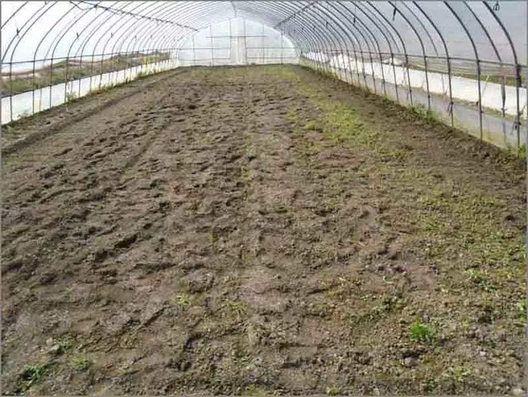 二氧化氯在土壤消毒中的应用