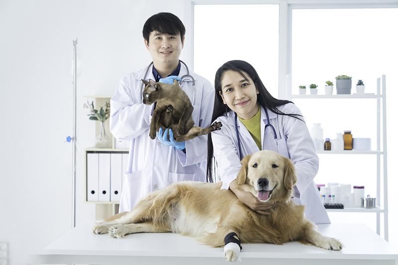 宠物医院全在用的室内环境消毒方法