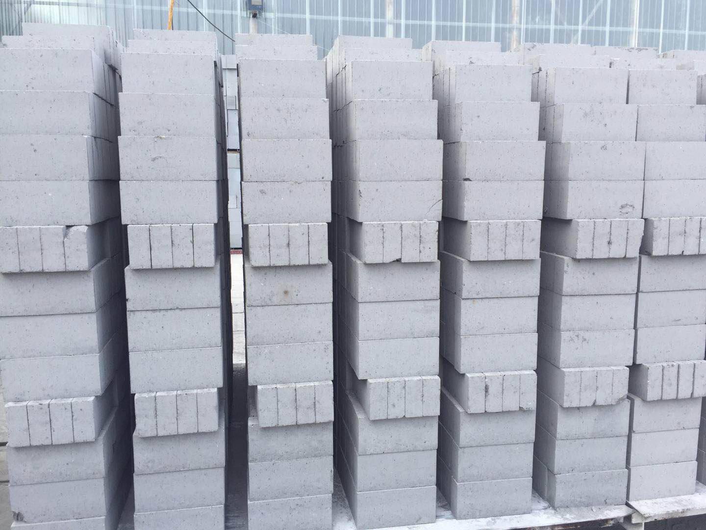蒸压粉煤灰标砖厂家