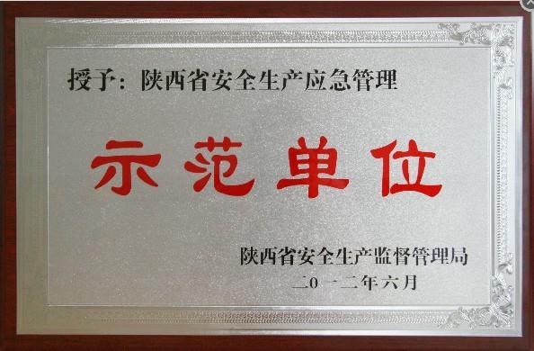 西安钢丝网-示范单位