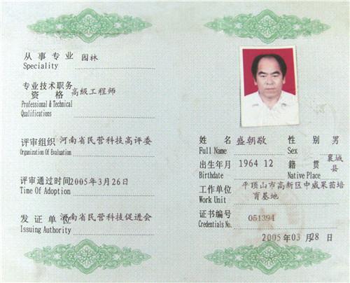 高级工程师资格证