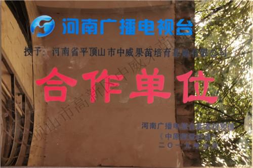 河南广播电视台合作单位