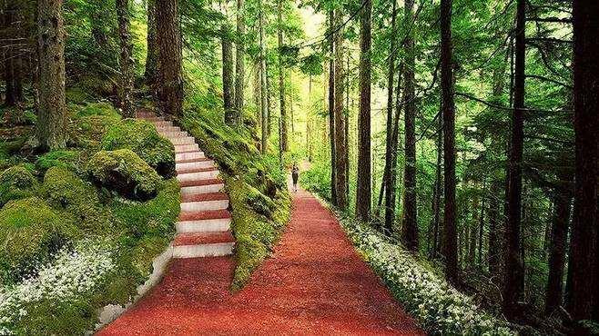 罗平县森林公园彩色沥青施工