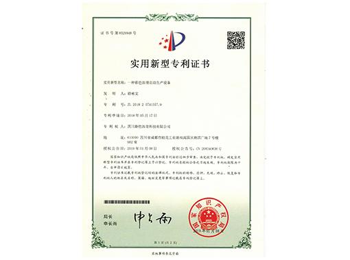 实用新型专项证书(四)