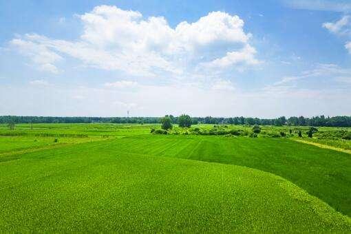 我国将建成10亿亩高标准农田