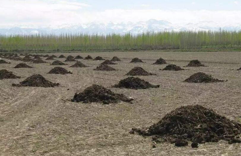 四川有机肥