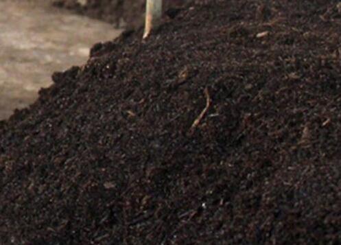 四川蔬菜有机肥销售