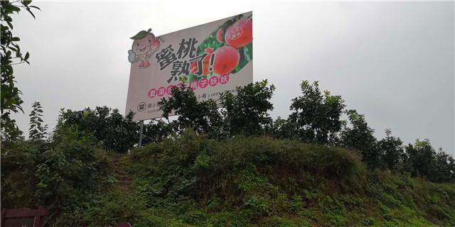 四川果树有机肥厂家