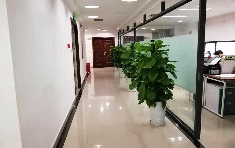 企业环境(二)