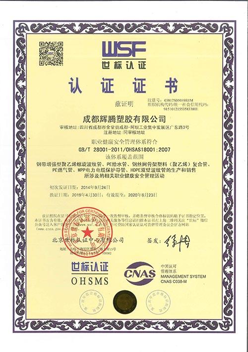 輝騰榮譽證書展示