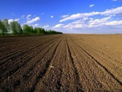 不同的土地评估法及其在农地评估中的应用