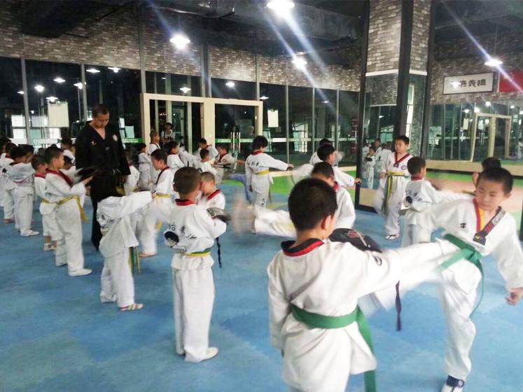 青少年跆拳道教学