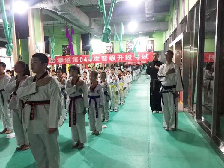 成人跆拳道班培训展示