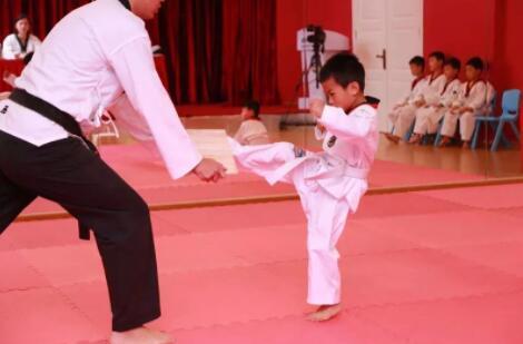 青少年跆拳培训道抓拍