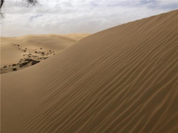 库布齐沙漠徒步,是一条什么样的路?