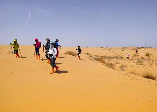 """""""探秘内蒙古""""——库布齐沙漠4天3晚徒步穿越无人区探险之游"""