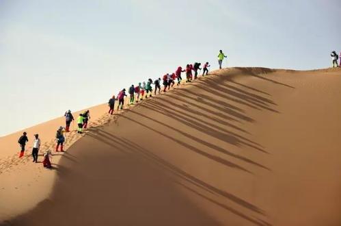 库布齐沙漠团建有哪些是你不知道的事呢?