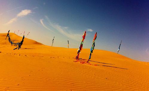 你了解库布其治沙模式实现多赢方案和引进五大沙漠的方法吗?