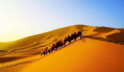 沙漠短期游