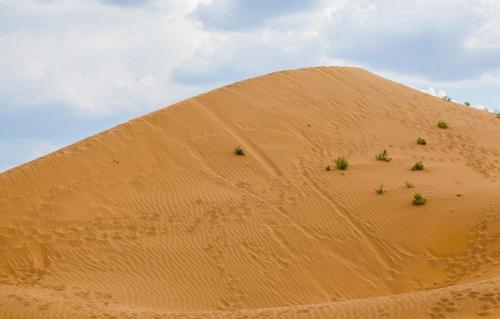 沙漠徒步后身体恢复指南