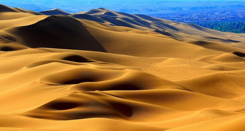 去沙漠旅行千万不要摘沙漠中的西瓜,你知道为什么吗?