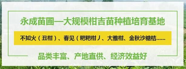 资中县永成苗圃场